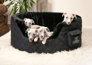 Knuffelwuff Hundesofa unter 100 euro
