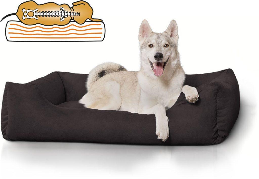 orhtopädisches Hundebett kaufen,orhtopädische Hundebetten, gelenkschonend